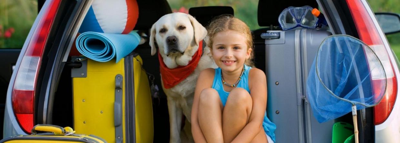Meisje met hond op vakantie in de auto
